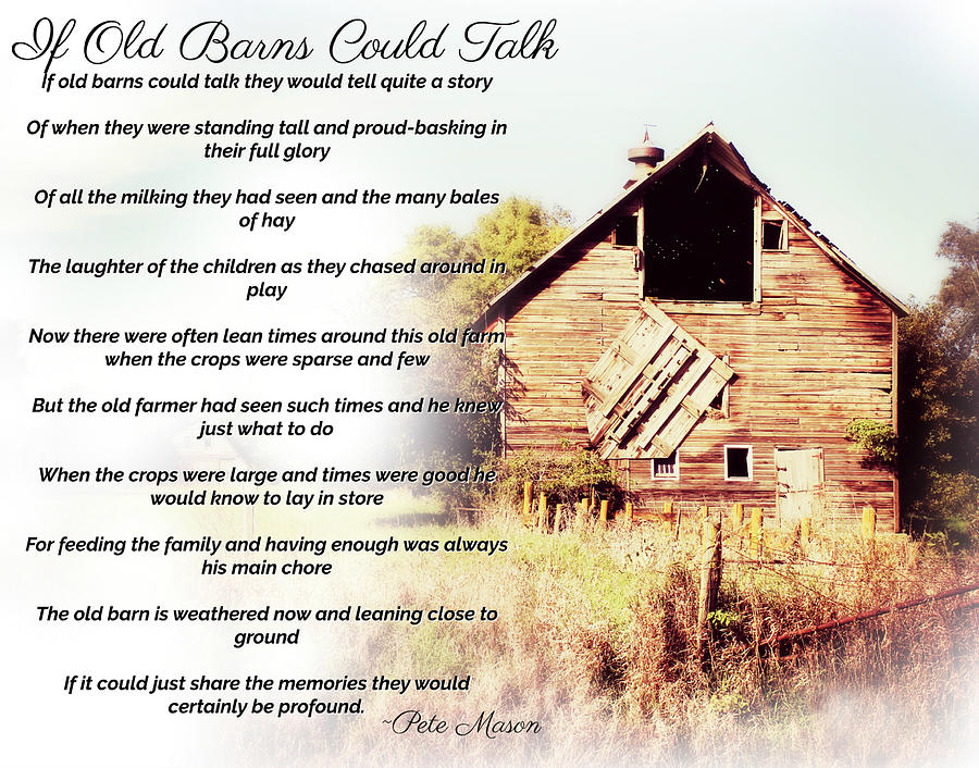 If Old Barns Could Talk by Julie Hamilton