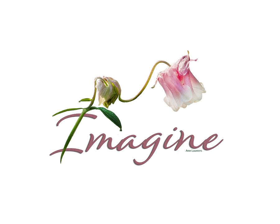 Imagine by Ann Lauwers