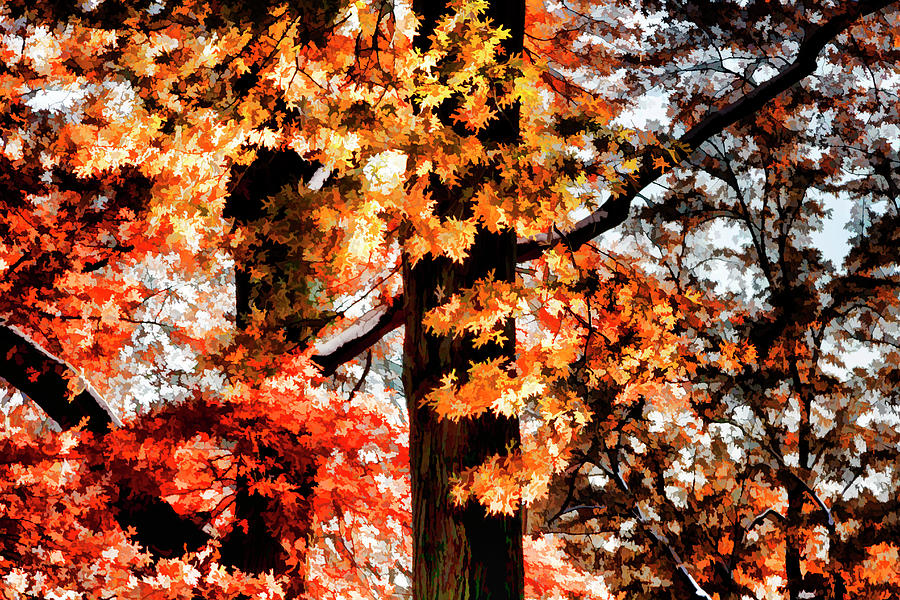 Impressionist Fall Leaves by Robert Ullmann