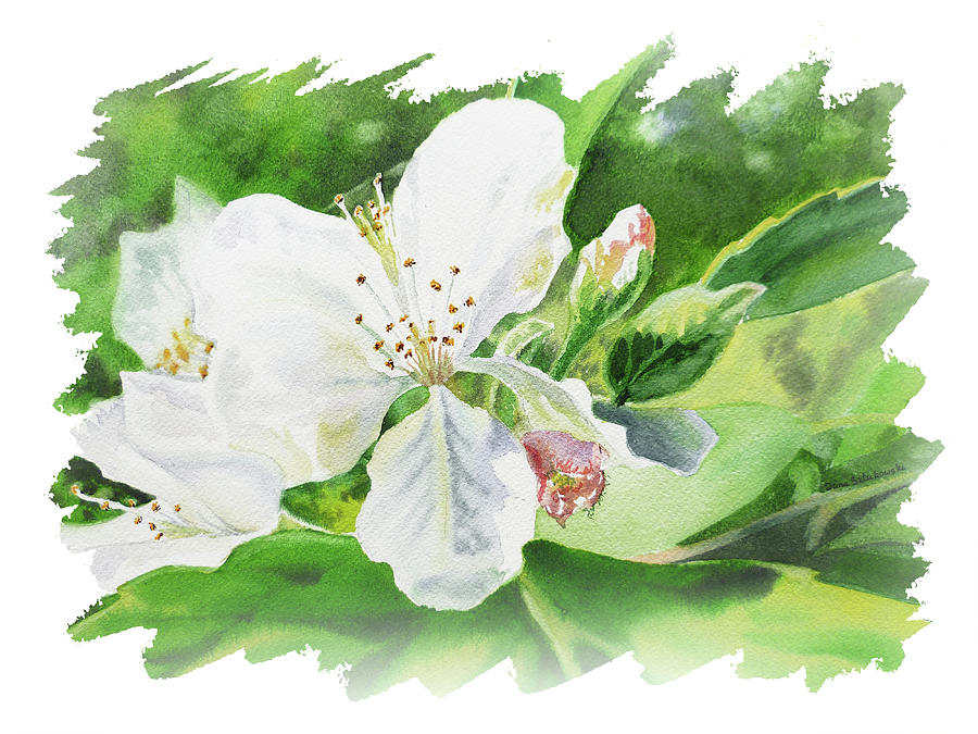 Impulse Of Nature Watercolor Blossom Flowers Free Brush Strokes II Painting