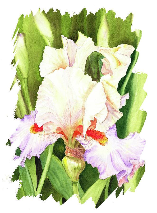 Impulse Of Nature Watercolor Iris Flower Free Brush Strokes I Painting
