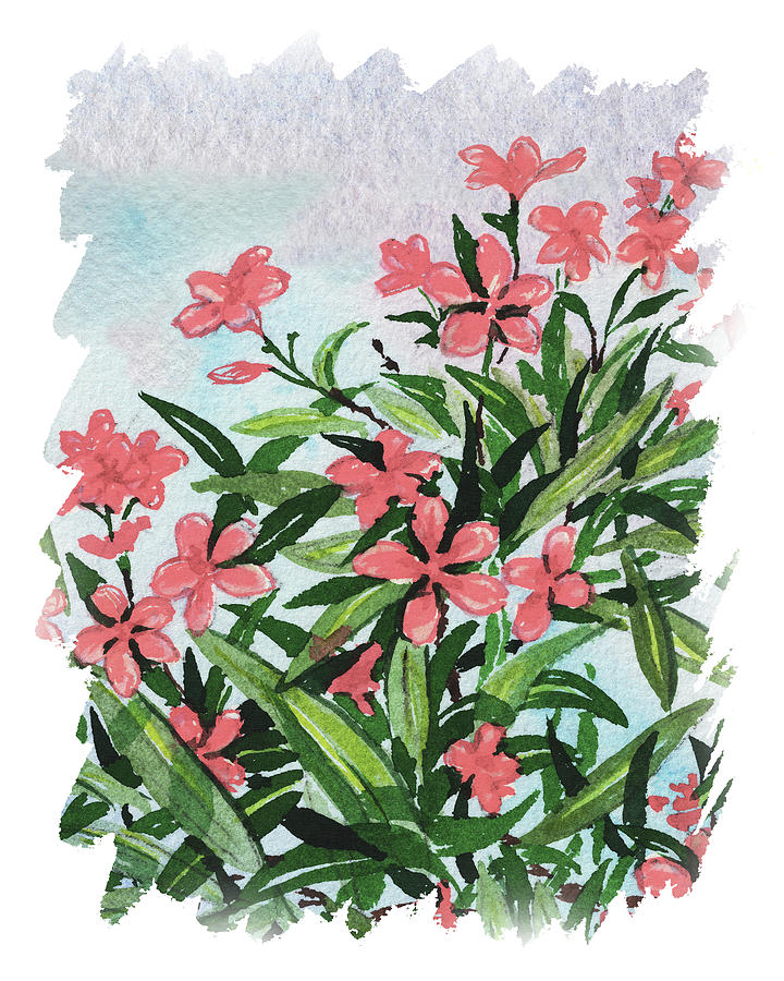 Impulse Of Nature Watercolor Oleander Blossoms Free Brush Strokes V Painting