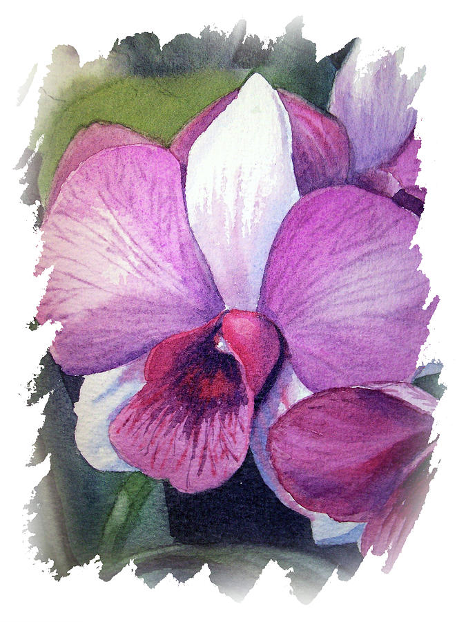 Impulse Of Nature Watercolor Orchid Flower Free Brush Strokes Vi Painting