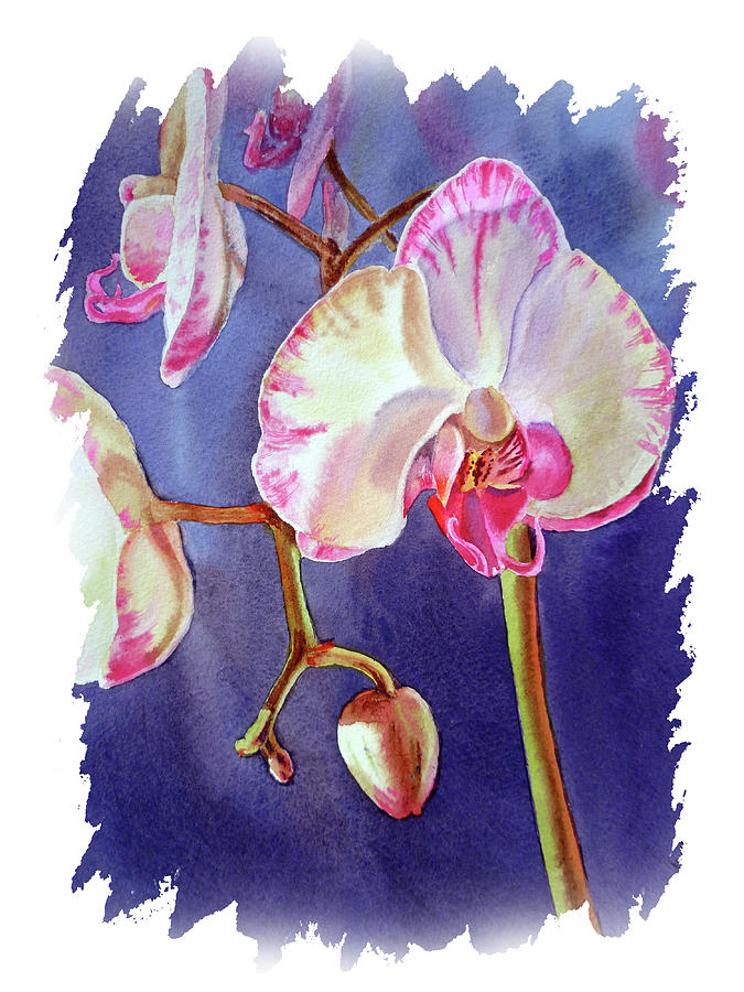 Impulse Of Nature Watercolor Orchid Flower Free Brush Strokes Vii Painting