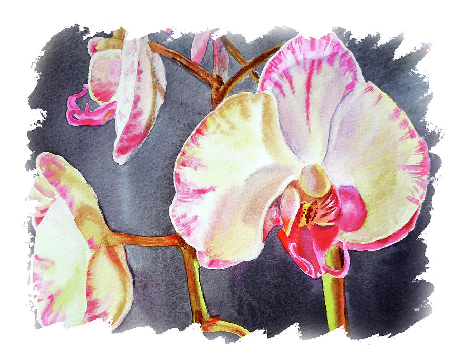 Impulse Of Nature Watercolor Orchid Flower Free Brush Strokes Viii Painting
