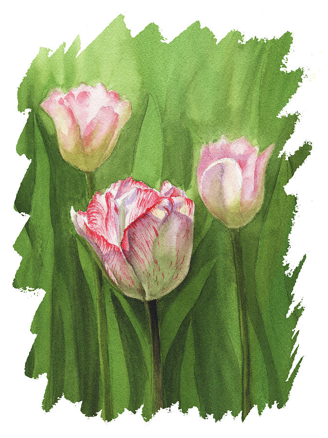 Impulse Of Nature Watercolor Tulips With Free Brush Strokes II Painting