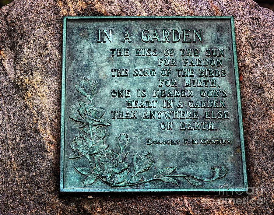 In a Garden by Karen Adams