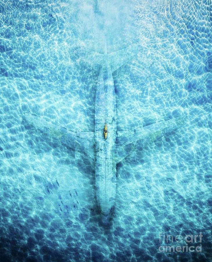 In Plane Sight  by EliteBrands Co
