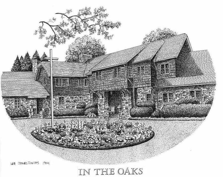 Black Mountain Drawing - In The Oaks by Lee Pantas