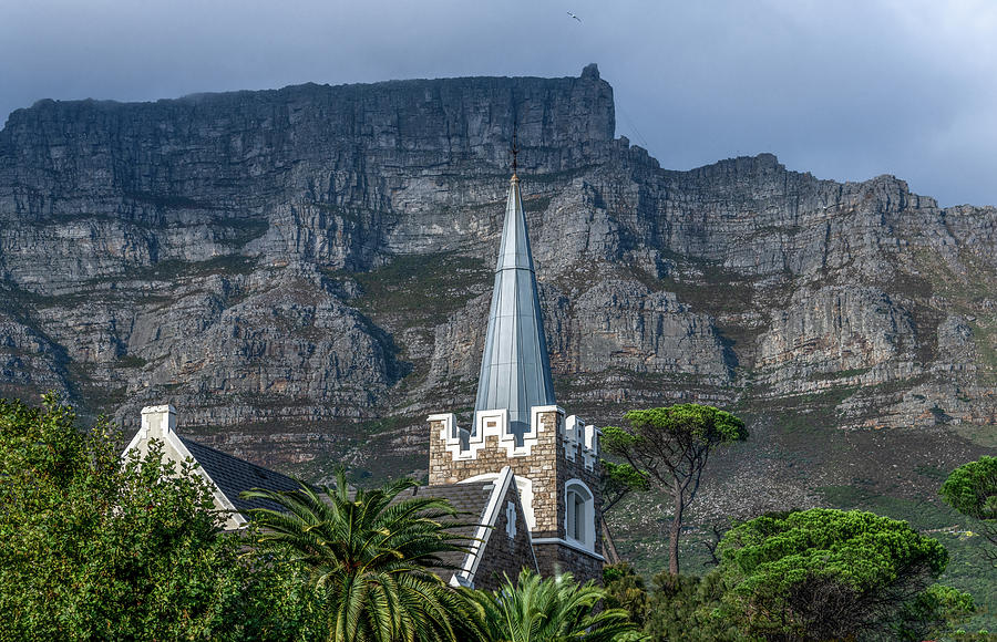 In the Shadow of Table Mountain by Marcy Wielfaert
