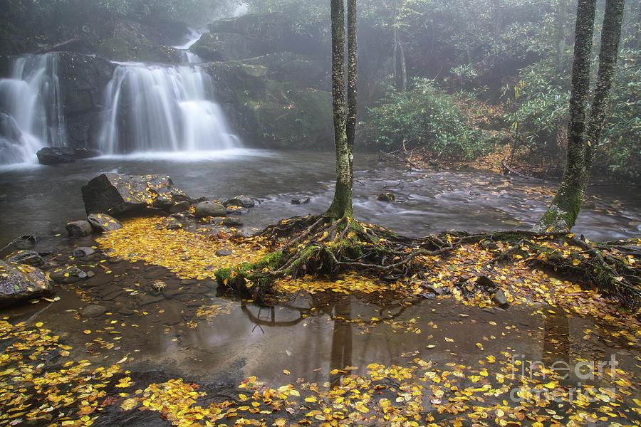 Falls Photograph - Indian Flats Falls 5 by Phil Perkins