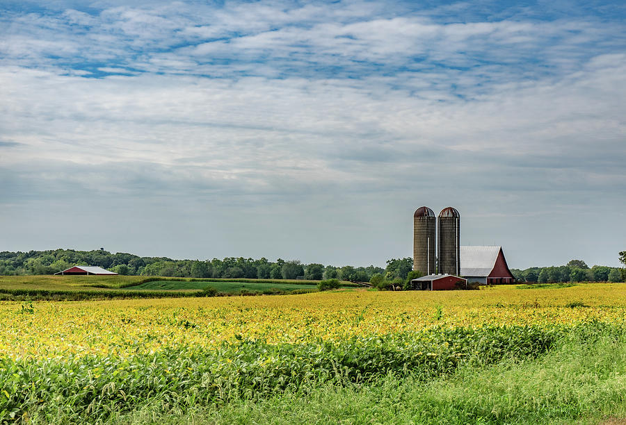 Landscape Photograph - Indiana Barn #125 by Scott Smith