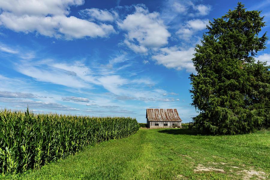 Landscape Photograph - Indiana Barn #189 by Scott Smith