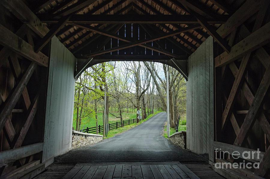 Inside Knecht's Covered Bridge  by Debra Fedchin