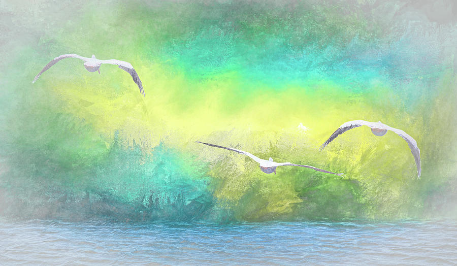 Into the Mist   American White Pelicans at Sea Abstract 1 by Linda Brody