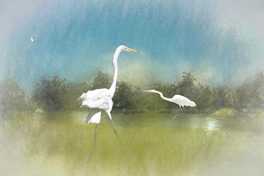 Into the Mist - Great Egret Loose Feather I    by Linda Brody