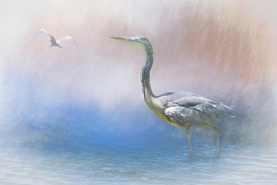 Into the Mist  Heron in Water III by Linda Brody