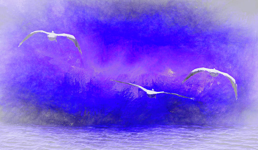 Into the Mist  Into the Night   American White Pelicans at Sea Abstract 2 by Linda Brody