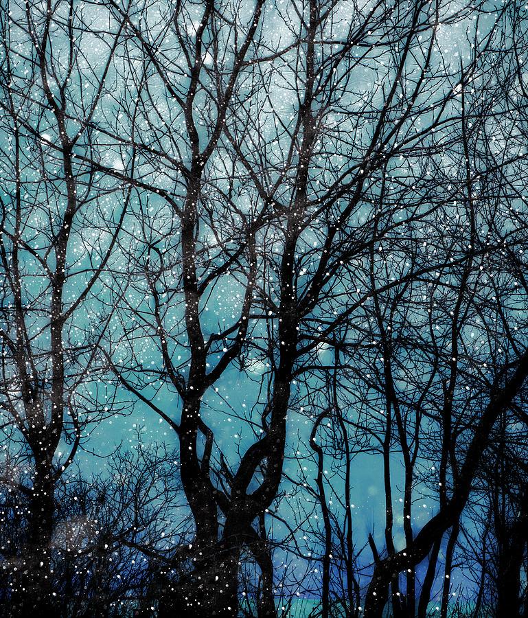 Into the Winter Night by Michele Cornelius