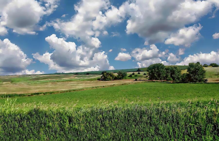 Iowa Farmland by Anthony Dezenzio