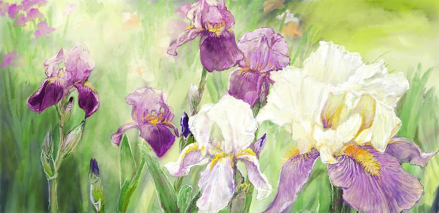 Flower Digital Art - Iris Garden by Scott Stafstrom