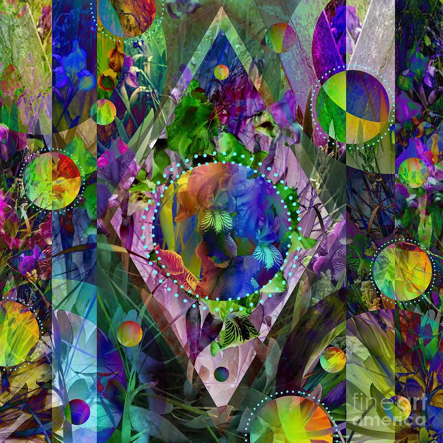 Iris Illusions Mixed Media