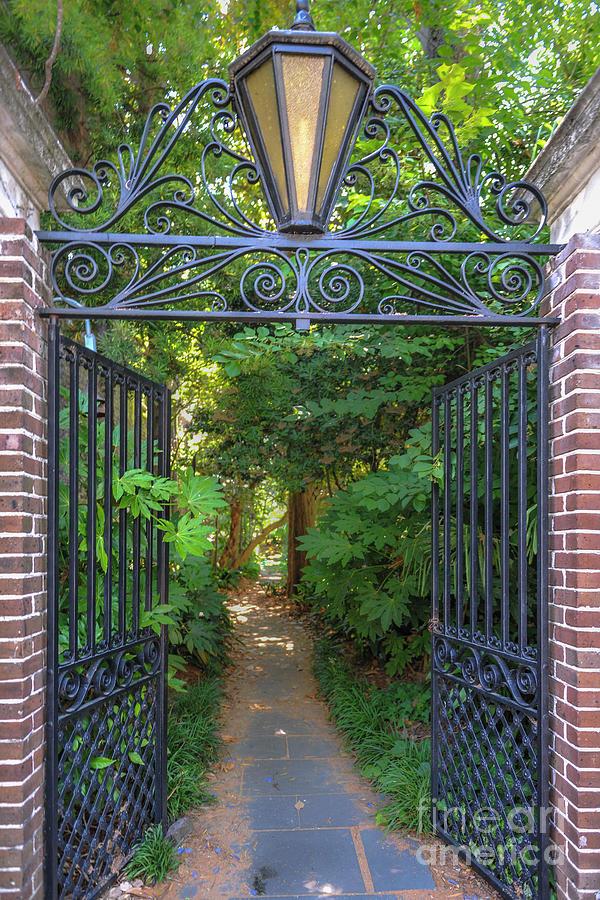 Iron Gates - Historic Charleston - Secret Passage Photograph