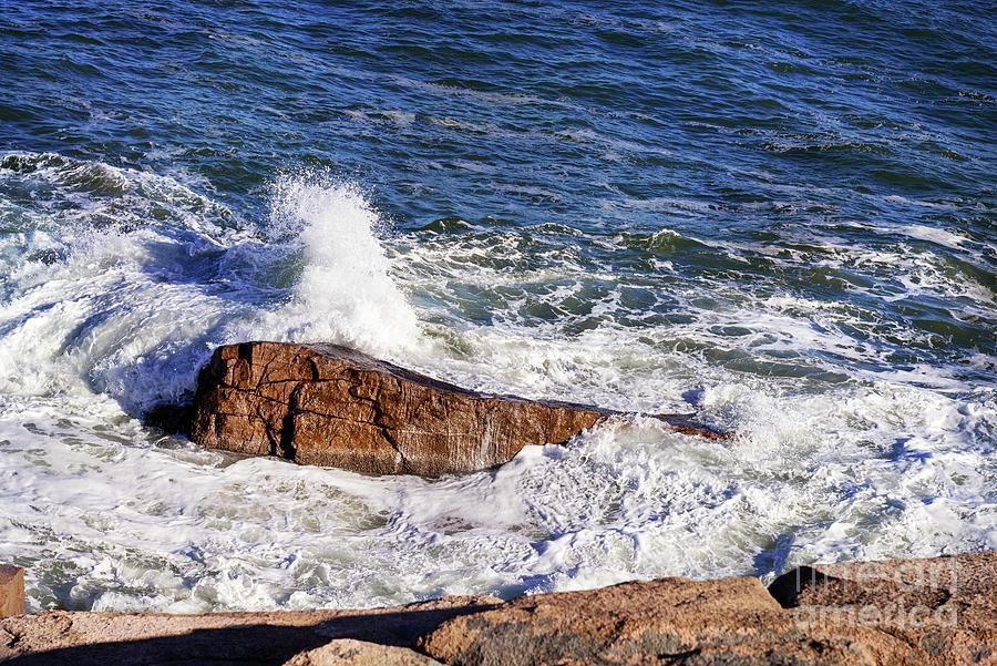 Is That a Whale Spouting? by Anita Pollak
