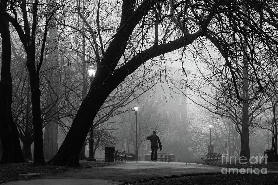 Isham Park, Fog  by Cole Thompson