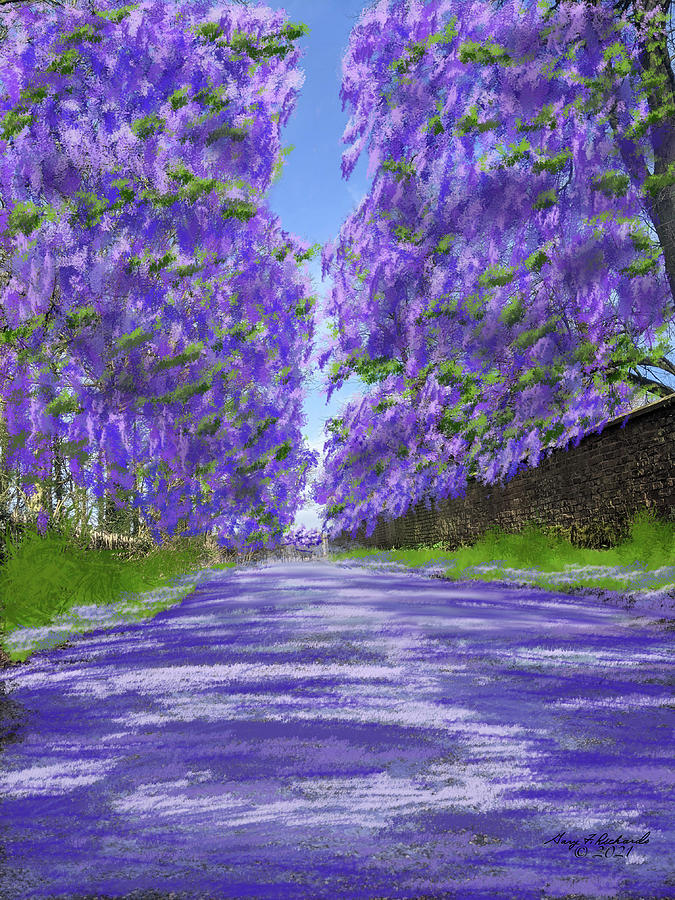 Jacaranda Lane Digital Art