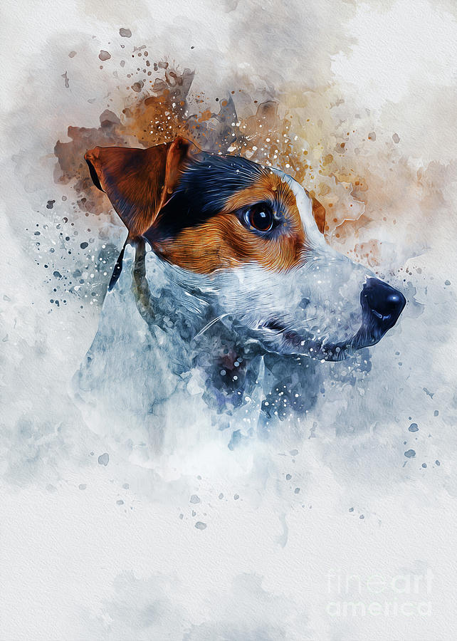 Dog Drawing - Jack Russell Art by Ian Mitchell