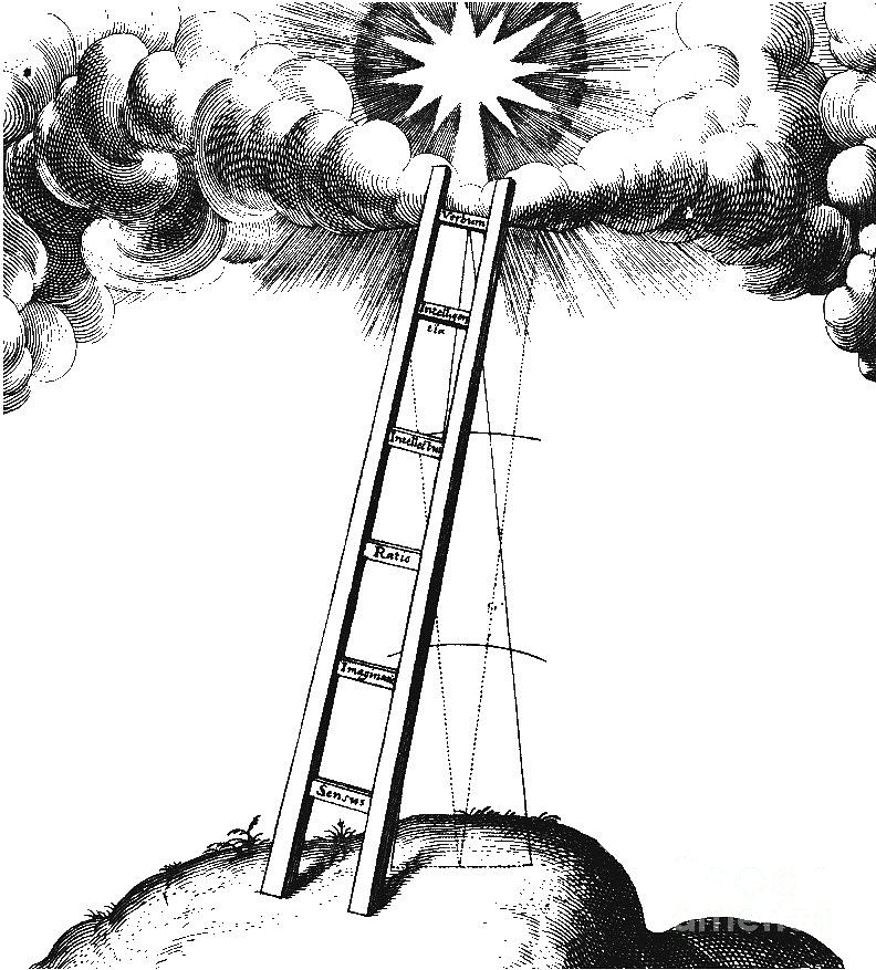 Metaphysical Drawing - Jacobs Ladder by Unknown