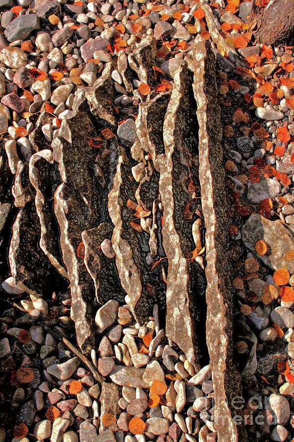 Jagged Little Rocks Photograph