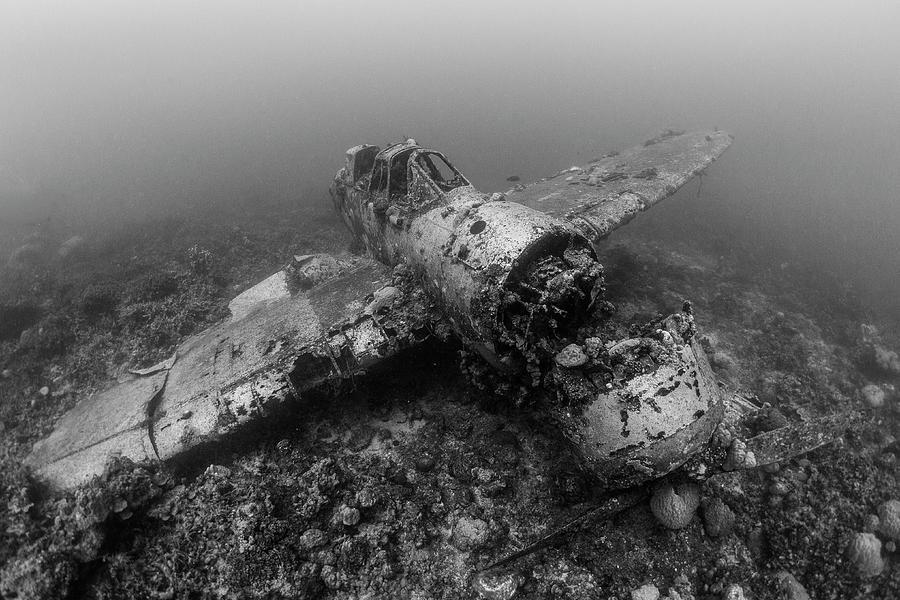 Jake Sea Plane Photograph