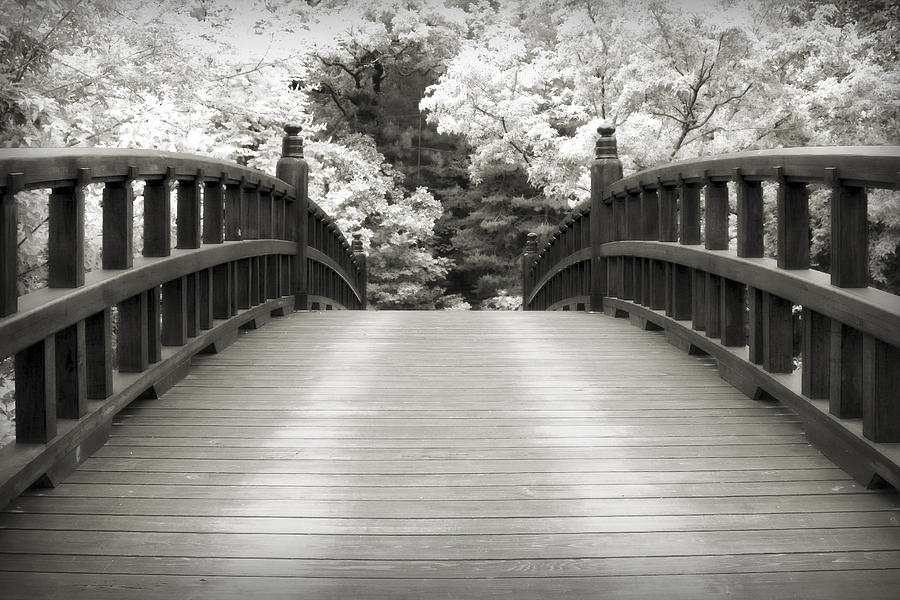 3scape Photograph - Japanese Dream Infrared by Adam Romanowicz