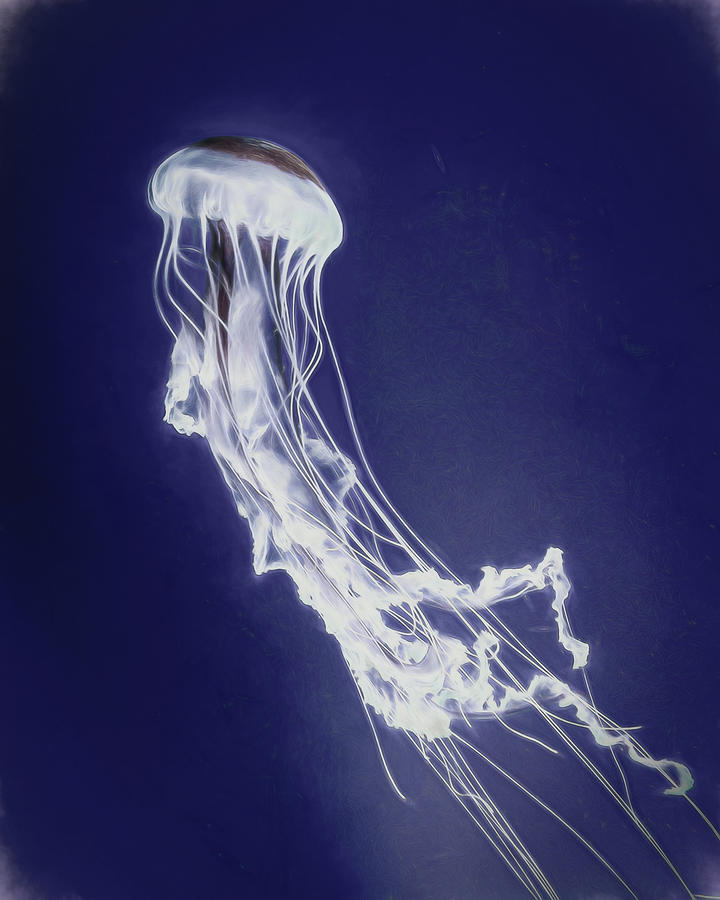 Jelly 2 Smudged by Wade Brooks