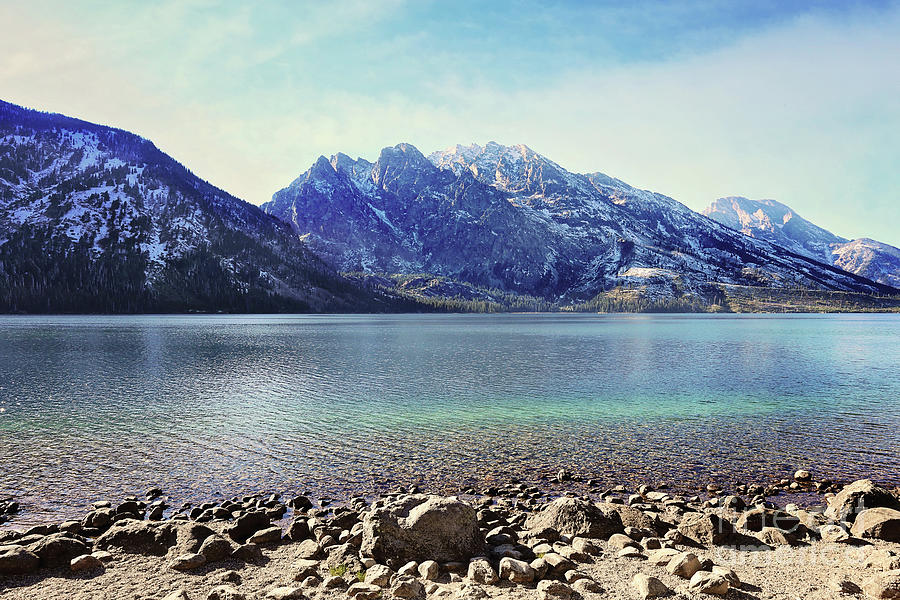Jenny Lake Grand Tetons Photograph