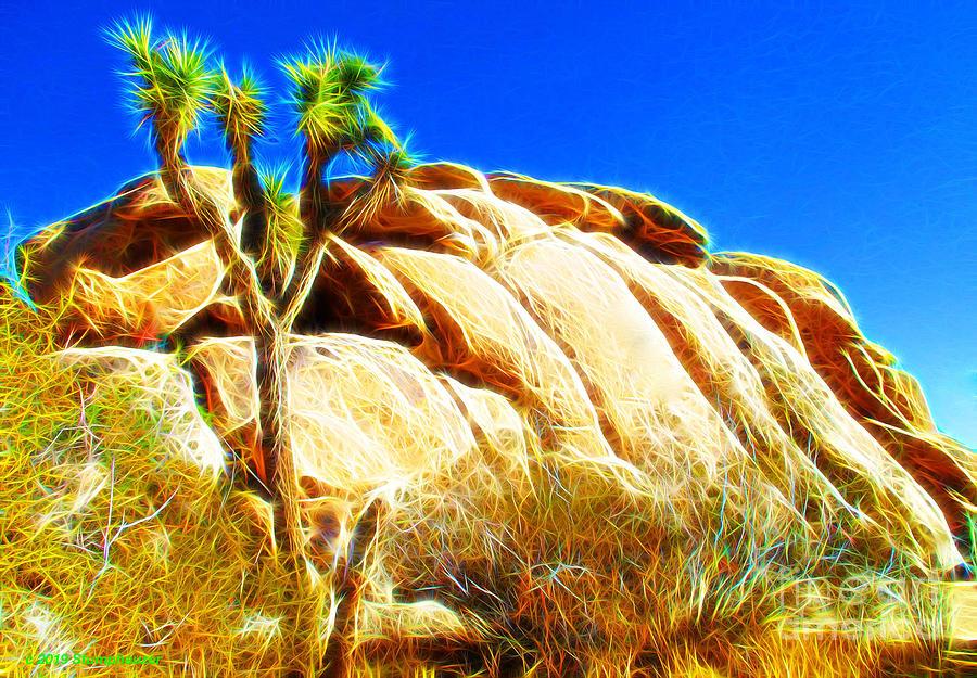 Joshua Tree National Park by Jerome Stumphauzer