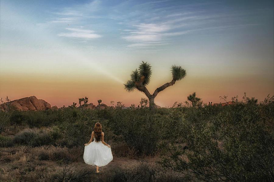 Joshua Tree Moments by Alison Frank