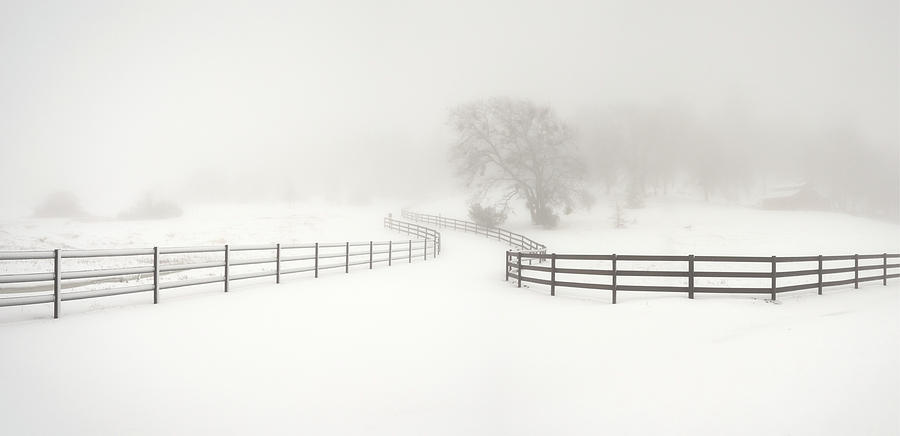 San Diego Photograph - Julian Driveway And Snow by William Dunigan