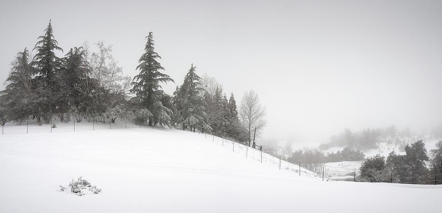 San Diego Photograph - Julian Snowy Hillside by William Dunigan