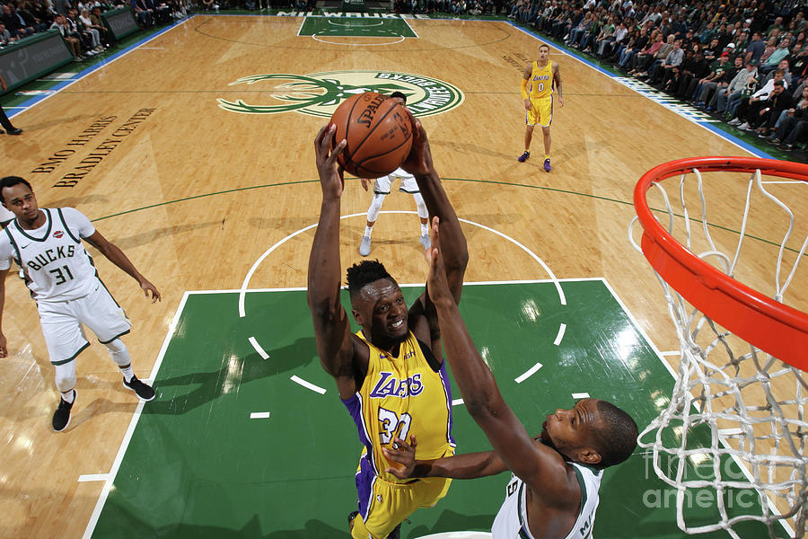 Julius Randle Photograph by Gary Dineen