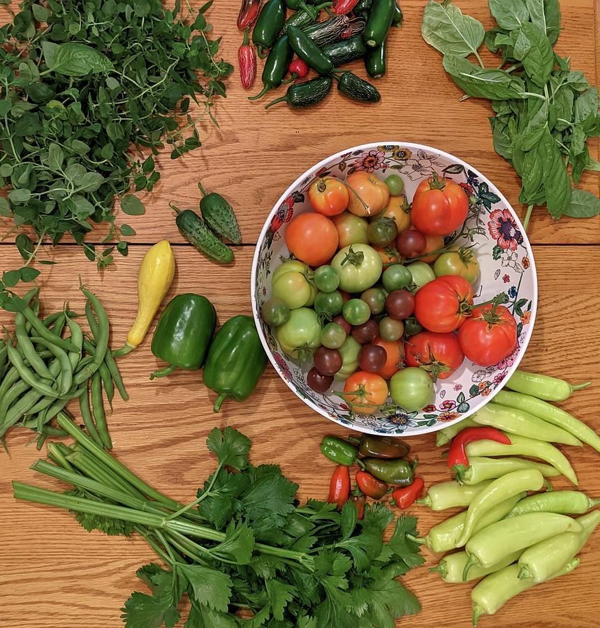 June Vegetable Harvest Photograph