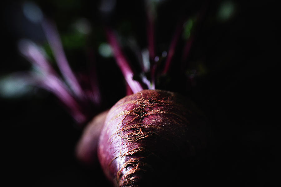 Just Beets Photograph