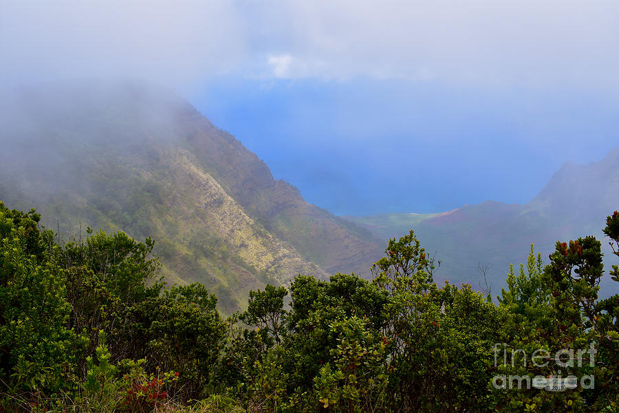 Kalalau Lookout Mist by Gary F Richards