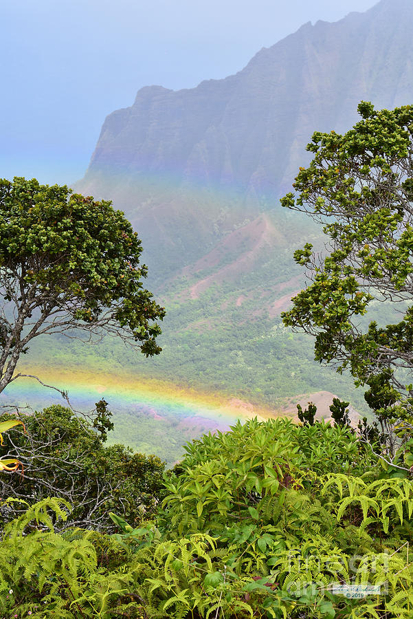 Kalalau Lookout Rainbow by Gary F Richards