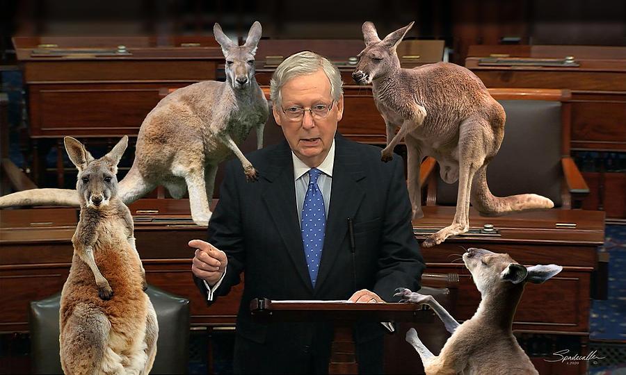 Kangaroo Court 2020 by Spadecaller