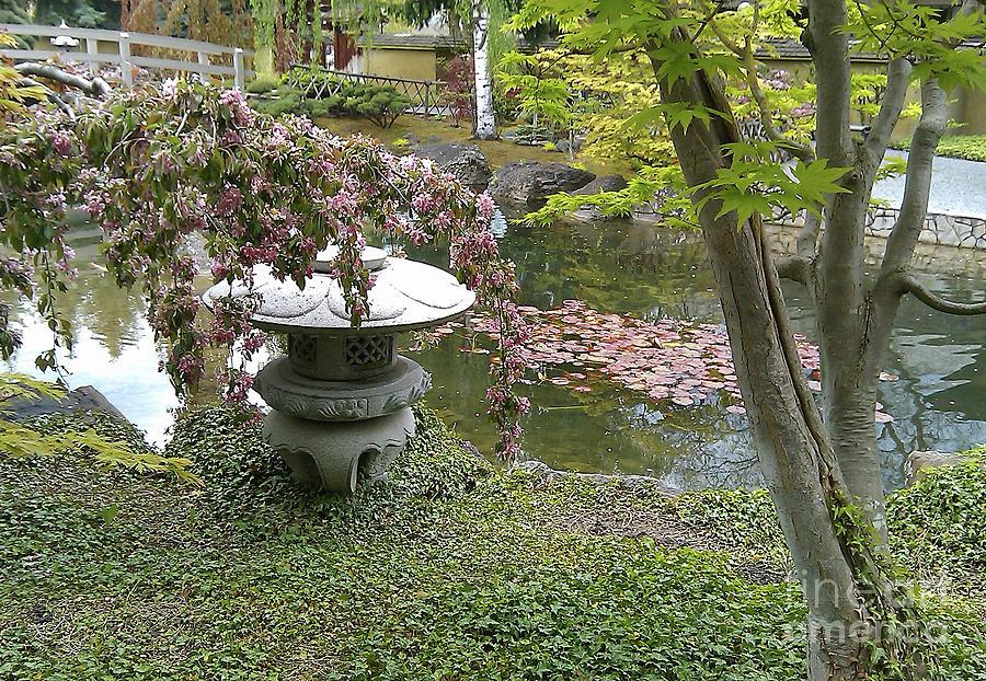 Kasugai Gardens Photograph