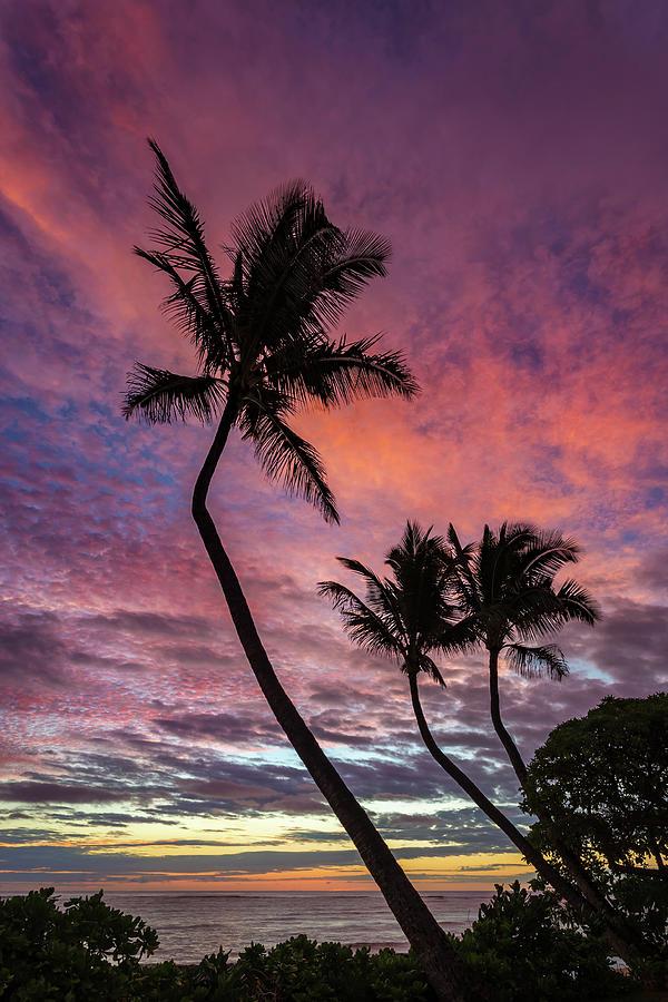 Kauai Rainbow Sky Photograph