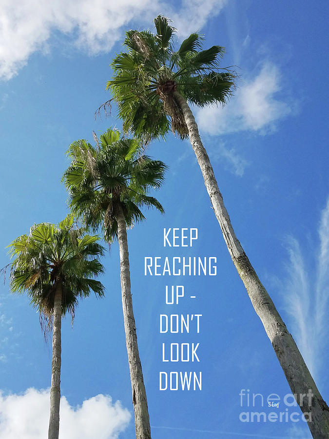 Keep Reaching Up Poster 300 by Sharon Williams Eng
